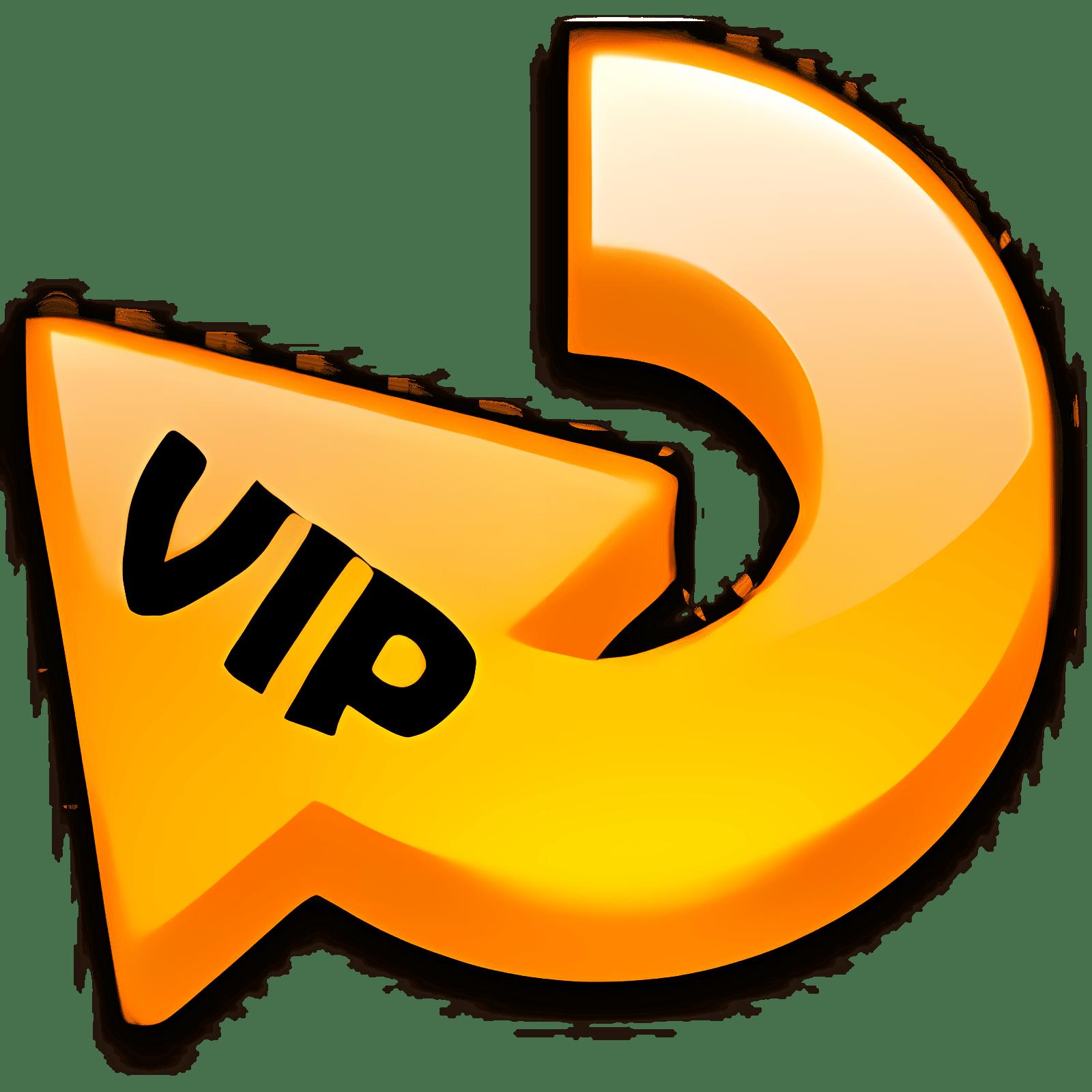 VIP Video Converter