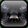Panther Theme