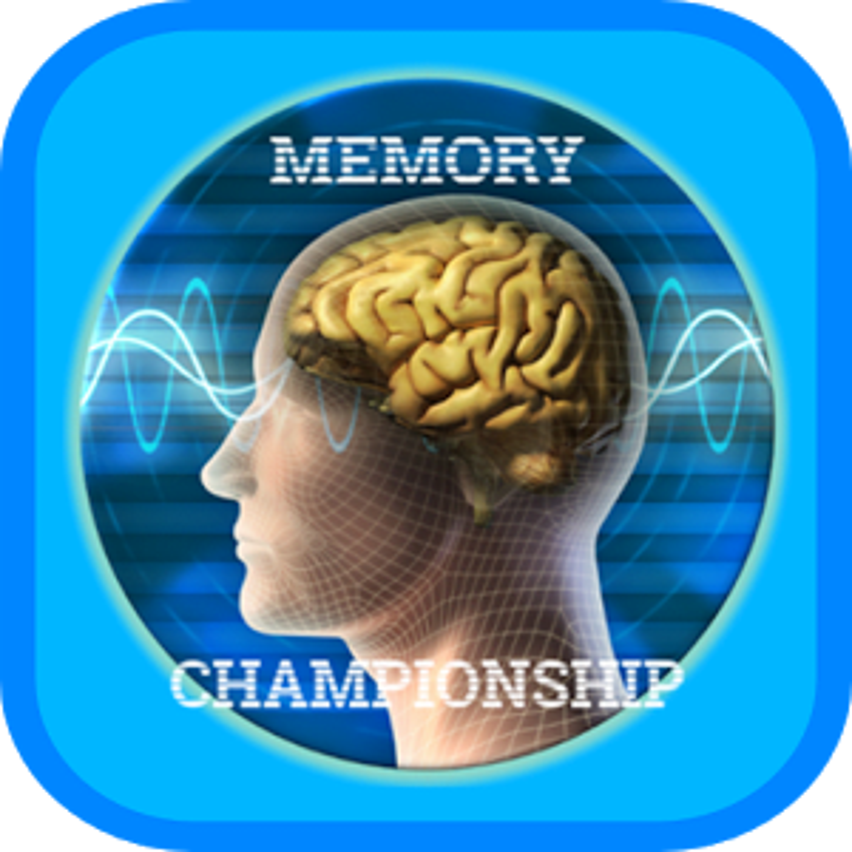 Campeonato de Memoria 3
