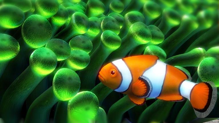 Nemo's Aquarium 3D