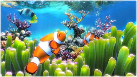 Clownfish aquarium live wallpaper download clownfish aquarium live wallpaper pros voltagebd Images