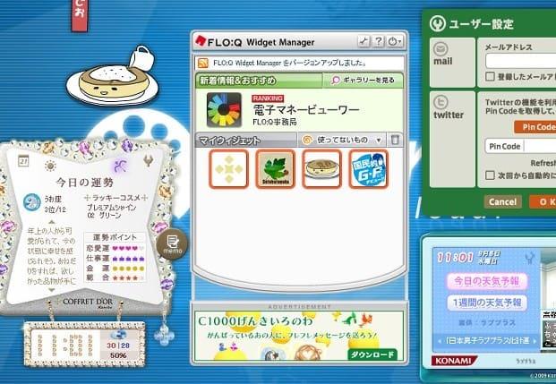 FLO:Q Widget Manager