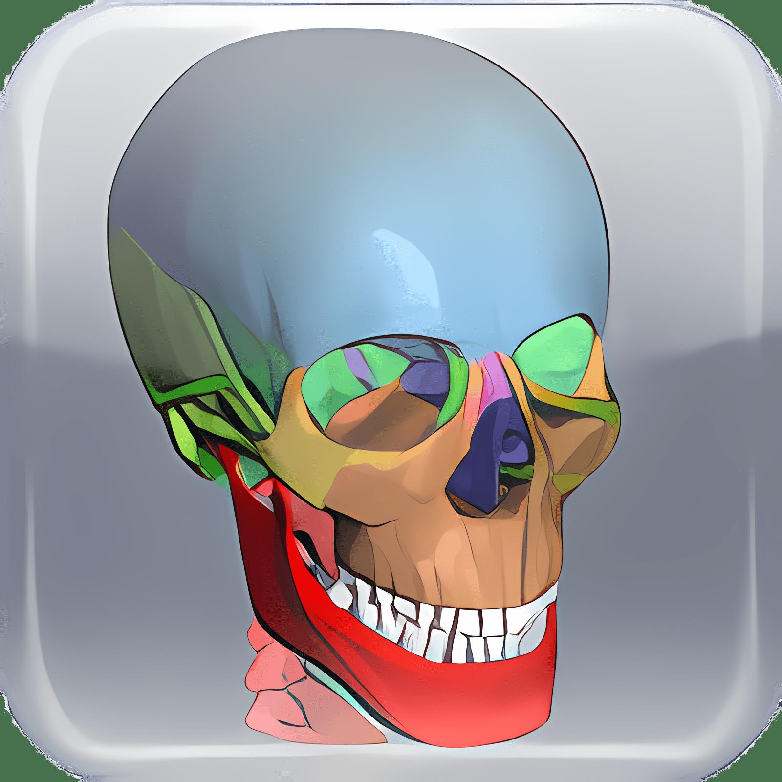 BoneLab 1.4.0