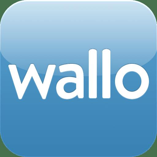 Contabilidad Doméstica Wallo 0.9