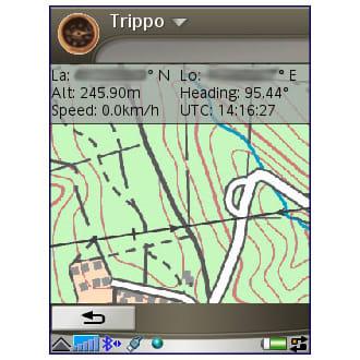 Trippo