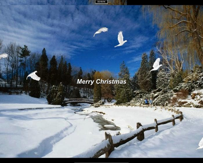 Christmas Doves Screensaver