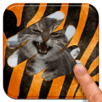 Animal Quiz 2015 2.3 y versiones superiores