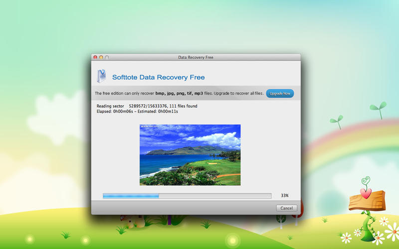File recovery software applications