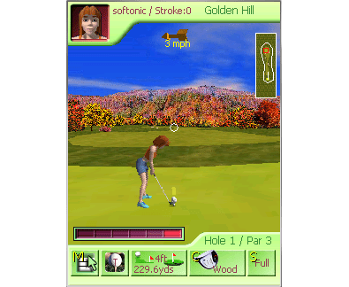 Nine Hole Golf