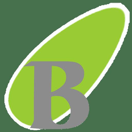 Hibosoft BossComing Boss Key 4.1.0.10