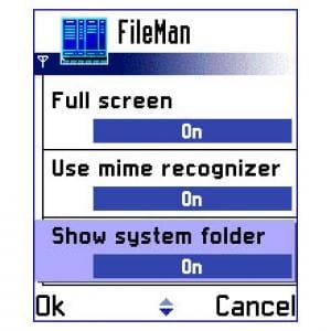 Best FileMan