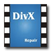 Digital Video Repair