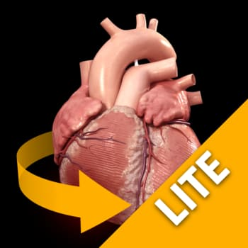 Heart - 3D Atlas of Anatomy Lite 1.0.9