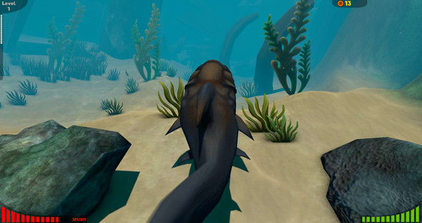 Koi fish 3d screensaver download for Feed and grow fish the game