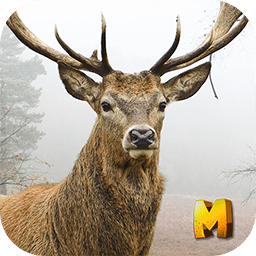 Deer Hunting 3D Sniper Shooter
