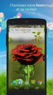 UR 3D Tulip Rose Live Theme