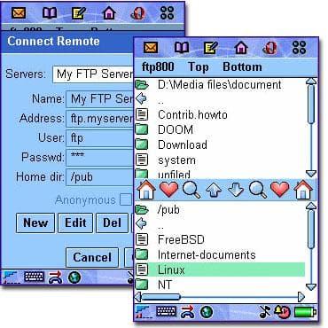 FTP800