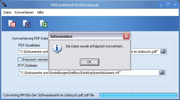 PDFzuWord Professional