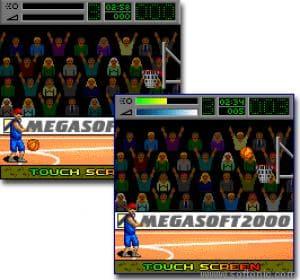 MegaBasket