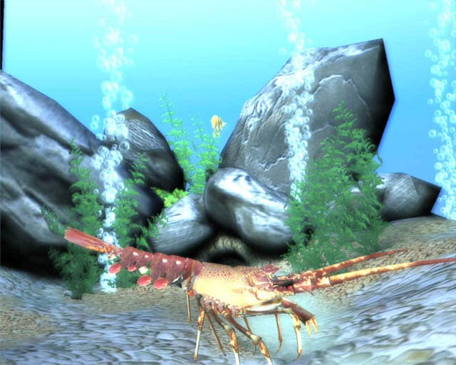 Free 3D Marine Screensaver