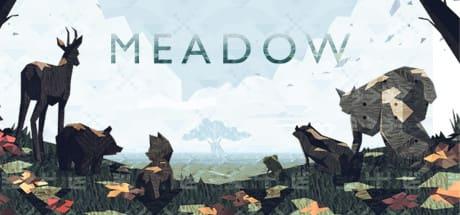 Meadow 2016