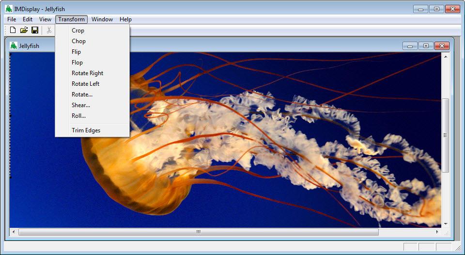 Lambda graphicsmagick convert