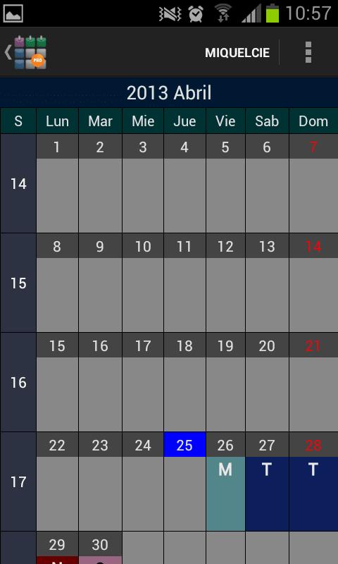 SaTurnos Pro Calendario