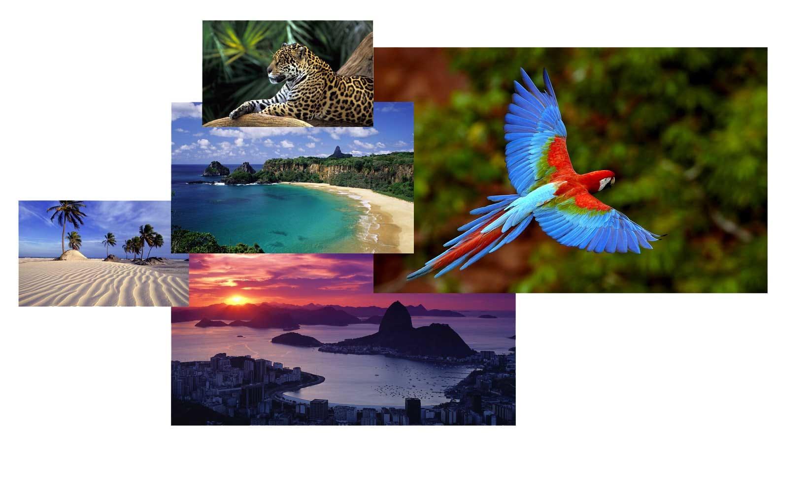 Brazil Themepack