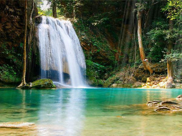 Tropischer Wasserfall Animiertes Wallpaper