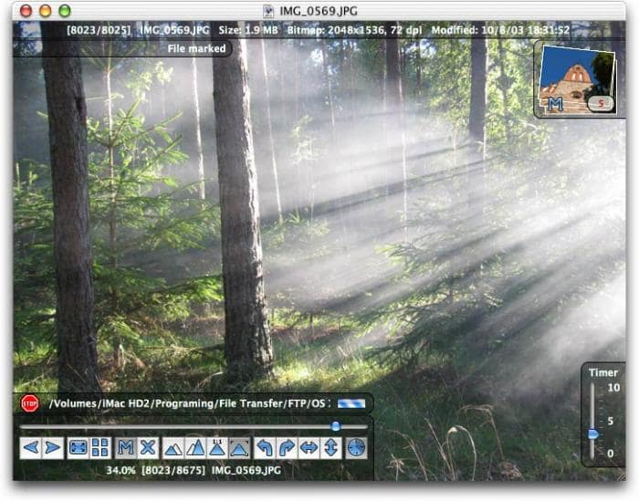Forest 3 7 5 Download Free To Macbook 10 13 High Sierra