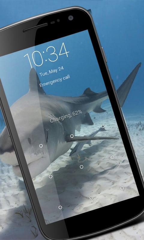 Shark Wallpaper HD