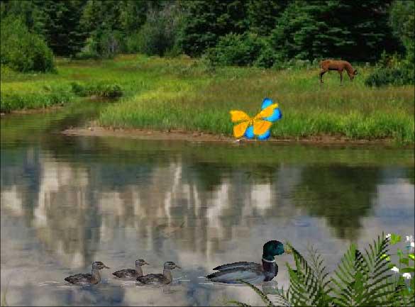 Alpine Lake – Fond d'écran animé