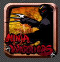 Ninja Warriors 1.0