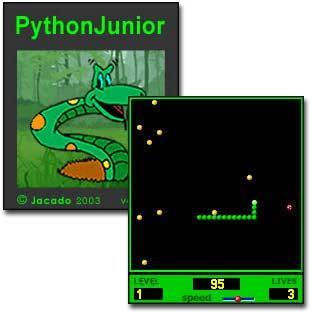 Python Junior