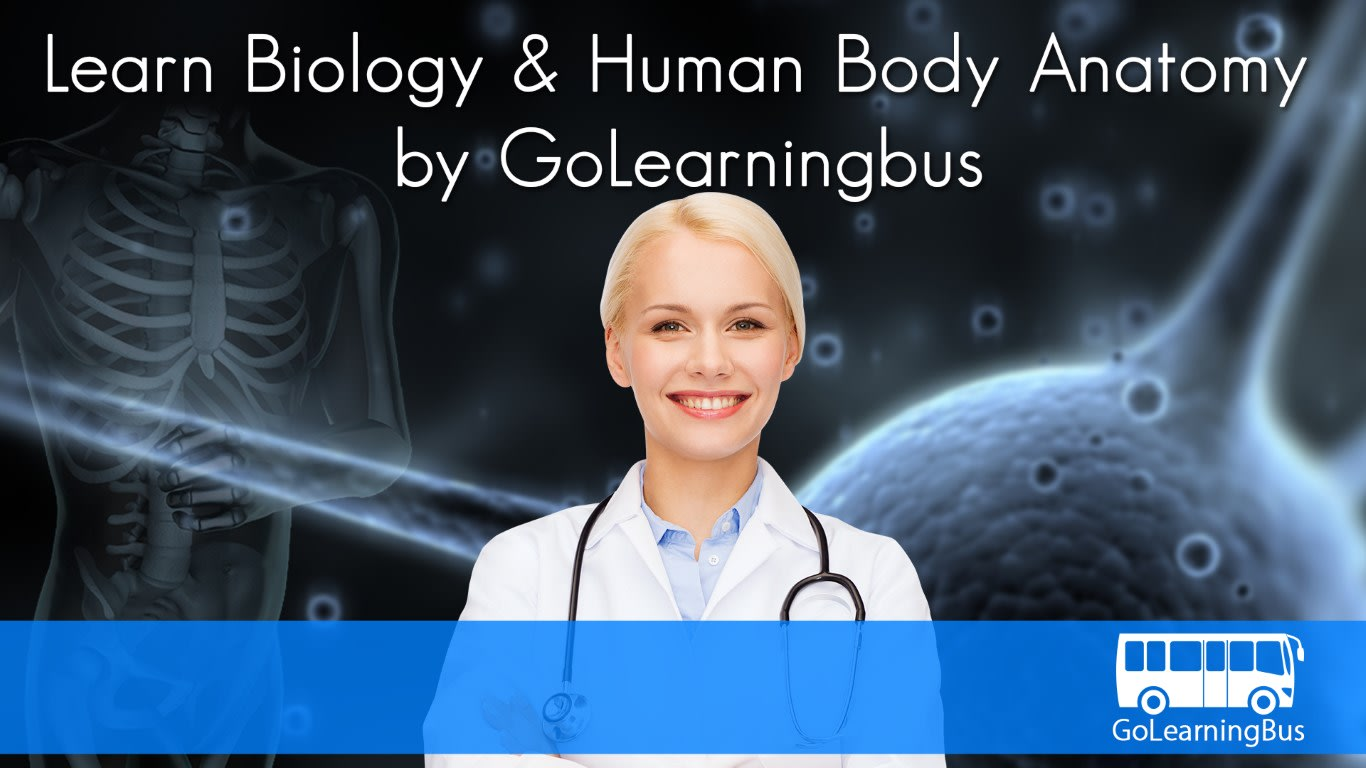 Learn Biology and Human Body Anatomy by GoLearningBus
