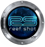 Reef Shot demo