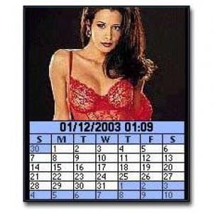 Image Calendar Lingerie Edition