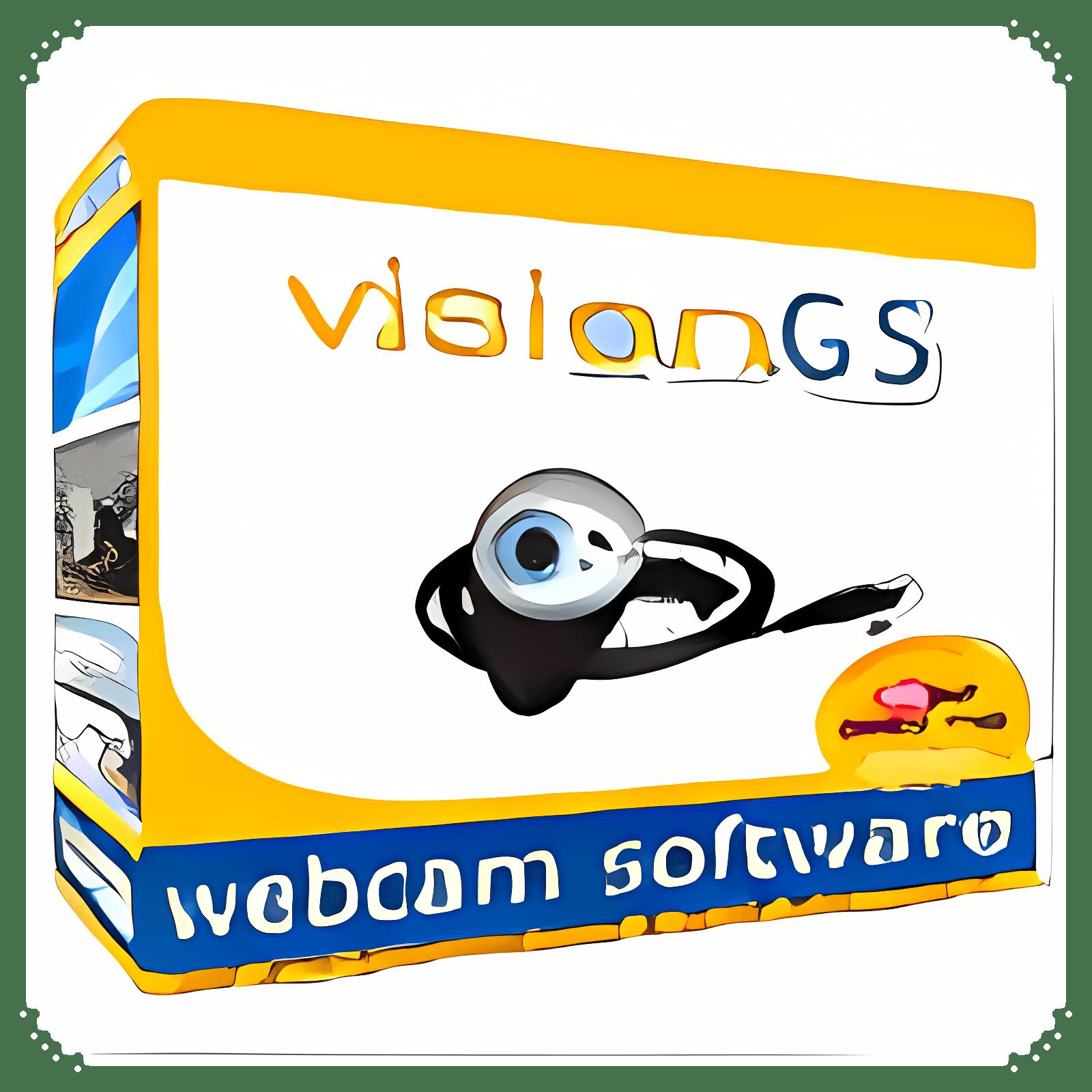 VisionGS