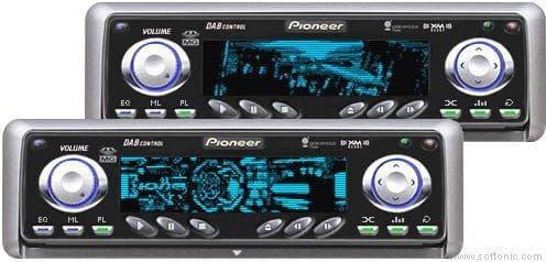 PionNer_AMP