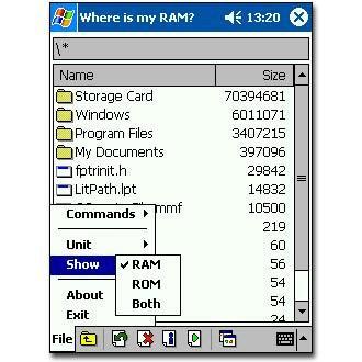 Where Is My RAM ?
