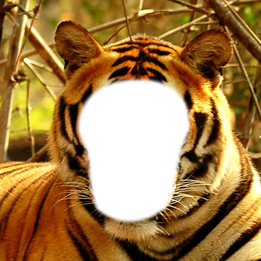 Tiger Photo Montage