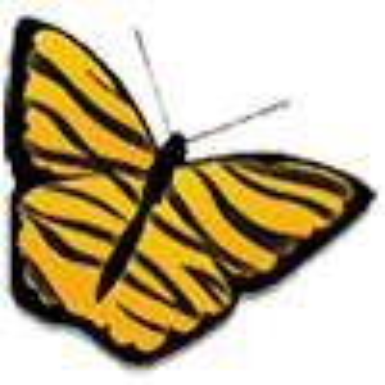Amnesty Widget Browser
