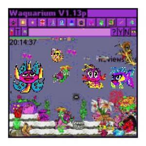 Waquarium