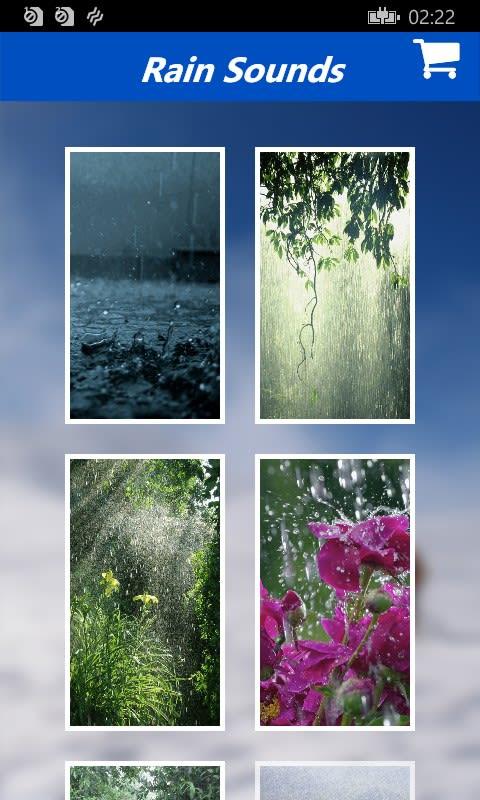 Rain Sound - Relax Melodies With Deep Sleep music-radio