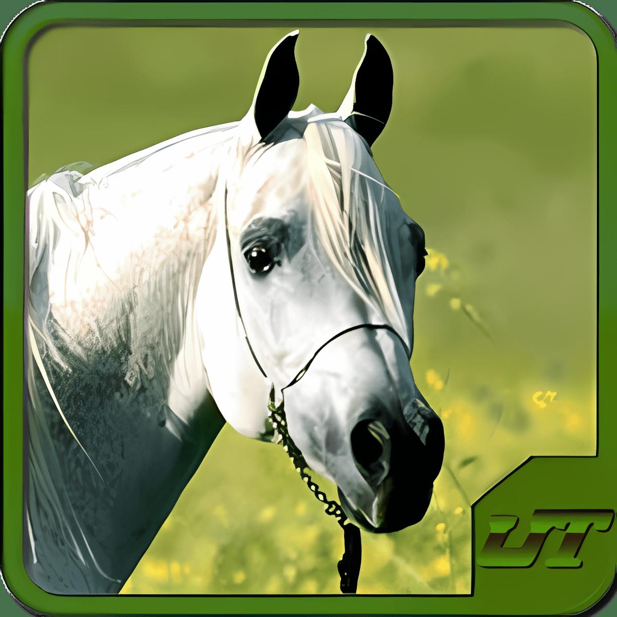 Horse Breeds & Pony Prueba HD