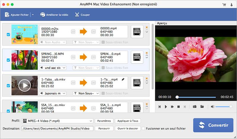 AnyMP4 Mac Video Enhancement