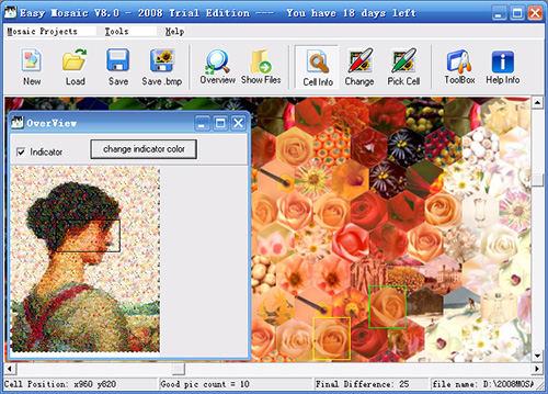 Easy Mosaic