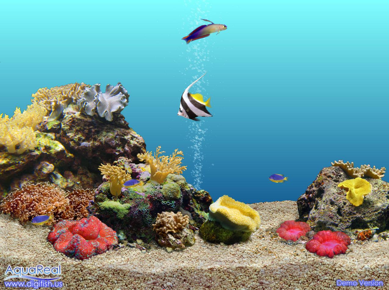 Aquareal descargar for Protector de pantalla en movimiento
