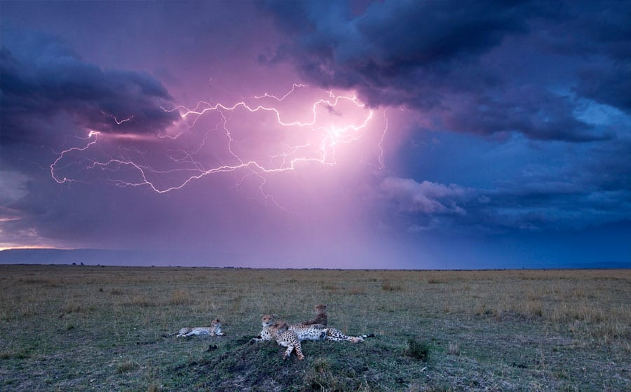 Lightning theme