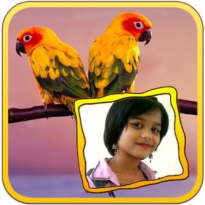 Birds Photo Frames